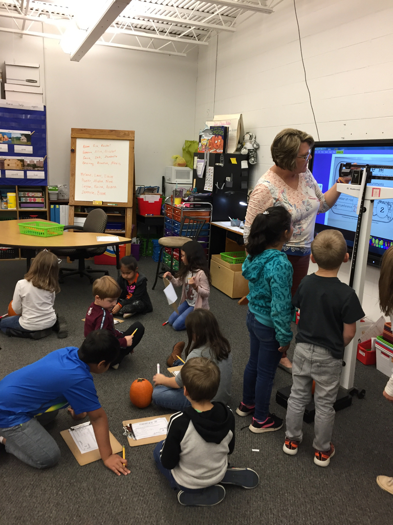 First grade measuring pumpkins!